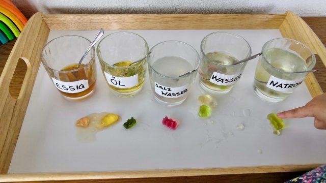 Gummibärchen Experiment -Forschen und Staunen