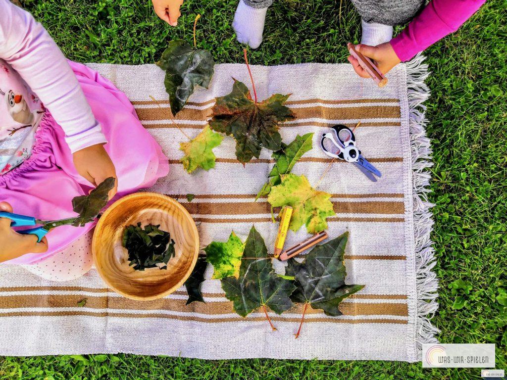 Blätter zerschneiden