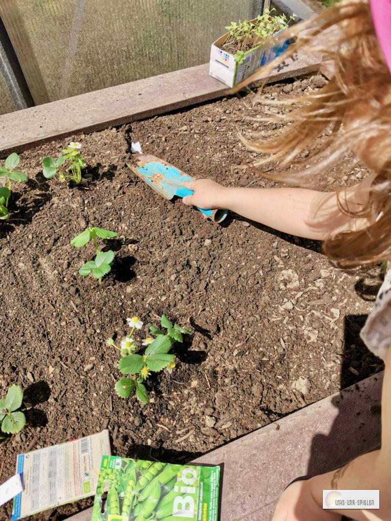 Wir pflanzen das Hochbeet an